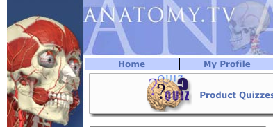 Screen shot of anatomy dot tv from stat ref