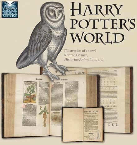 HarryPottersWorldBlog