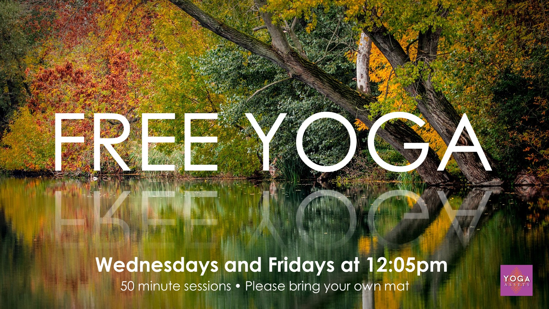 Free Yoga at Eccles Library