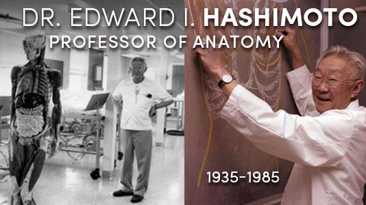 Dr. Hashimoto