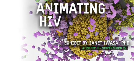 Animating HIV