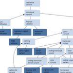 Biomedical Informatics Data Science