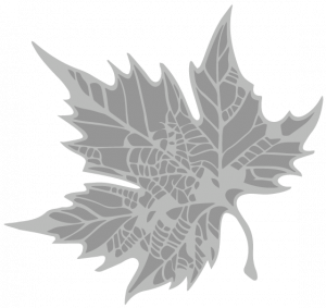 Medical Library Leaf Icon
