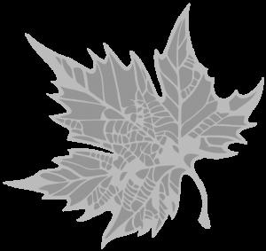 Medical Library Leaf Icon