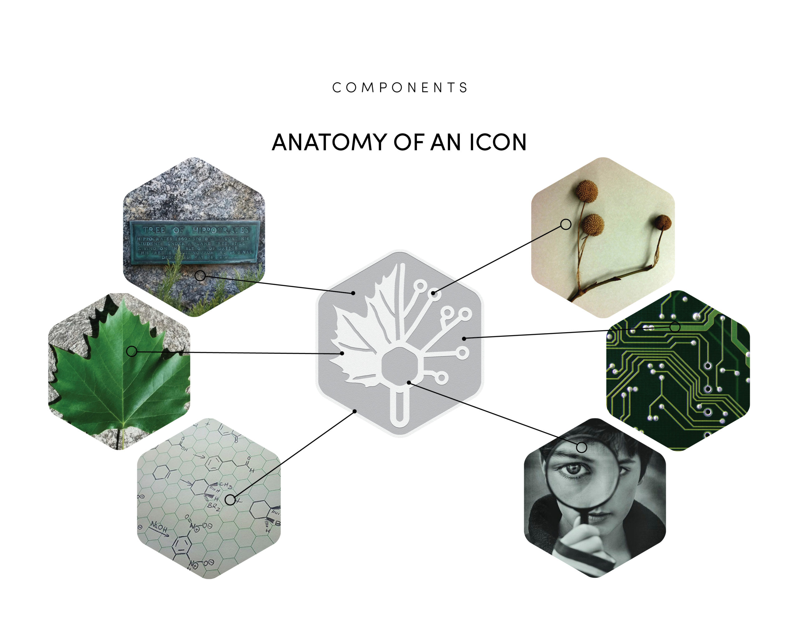 Anatomy of an icon